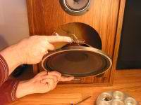 Speaker Repair